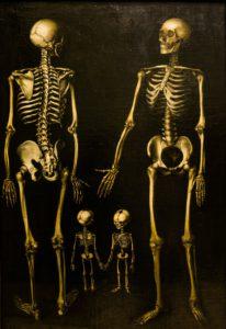skeletons-238135_1280